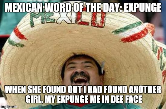 mexican word of the day | MEXICAN WORD OF THE DAY: EXPUNGE WHEN SHE FOUND OUT I HAD FOUND ANOTHER GIRL, MY EXPUNGE ME IN DEE FACE | image tagged in mexican word of the day | made w/ Imgflip meme maker