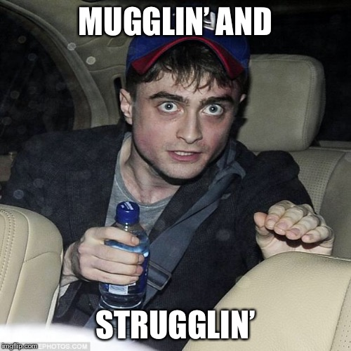 harry potter crazy | MUGGLIN' AND STRUGGLIN' | image tagged in harry potter crazy | made w/ Imgflip meme maker