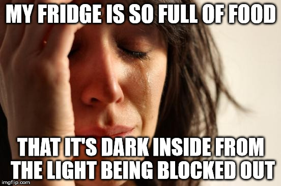 First World Problems Meme | MY FRIDGE IS SO FULL OF FOOD THAT IT'S DARK INSIDE FROM THE LIGHT BEING BLOCKED OUT | image tagged in memes,first world problems,AdviceAnimals | made w/ Imgflip meme maker