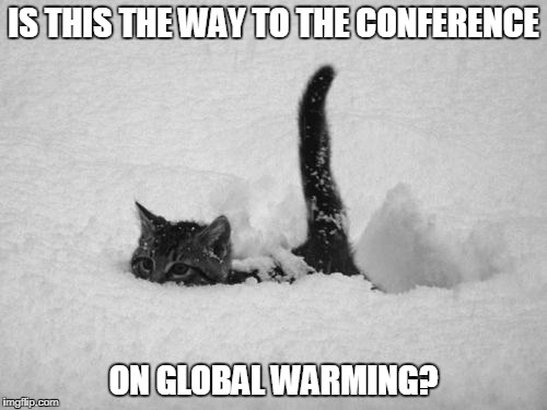 Notice they never mention global warming...I mean climate change...when it's below zero. | IS THIS THE WAY TO THE CONFERENCE ON GLOBAL WARMING? | image tagged in snow cat,global warming,climate change,funny memes,liberal hypocrisy | made w/ Imgflip meme maker