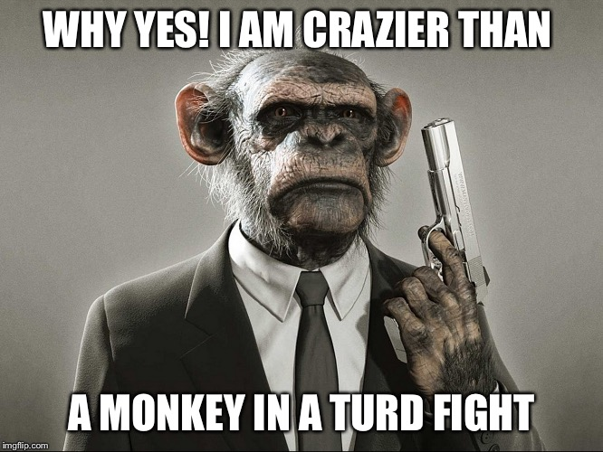 Chimpanzee with Gun | WHY YES! I AM CRAZIER THAN A MONKEY IN A TURD FIGHT | image tagged in chimpanzee with gun | made w/ Imgflip meme maker