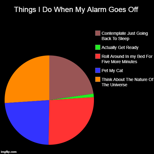 Things I Do When My Alarm Goes Off | Think About The Nature Of The Universe, Pet My Cat, Roll Around In my Bed For Five More Minutes, Actual | image tagged in funny,pie charts | made w/ Imgflip pie chart maker