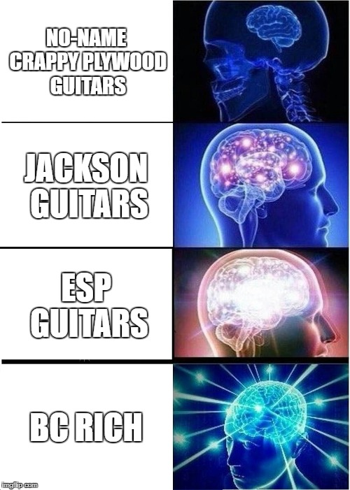 Expanding Brain | NO-NAME CRAPPY PLYWOOD GUITARS JACKSON GUITARS ESP GUITARS BC RICH | image tagged in memes,expanding brain,guitar,guitars,brain,brains | made w/ Imgflip meme maker
