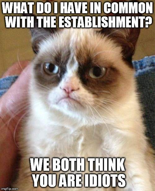 At least I try to tell the truth. | WHAT DO I HAVE IN COMMON WITH THE ESTABLISHMENT? WE BOTH THINK YOU ARE IDIOTS | image tagged in memes,grumpy cat,mainstream media | made w/ Imgflip meme maker