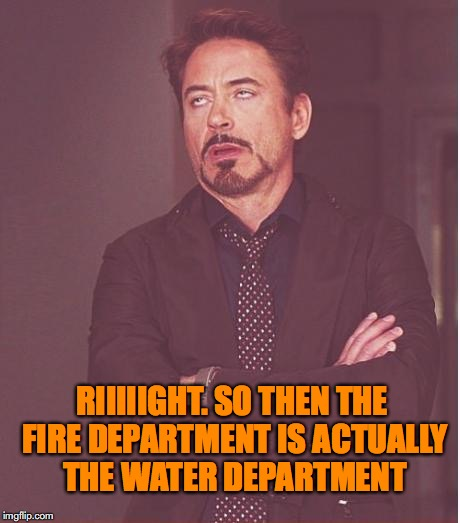 Face You Make Robert Downey Jr Meme | RIIIIIGHT. SO THEN THE FIRE DEPARTMENT IS ACTUALLY THE WATER DEPARTMENT | image tagged in memes,face you make robert downey jr | made w/ Imgflip meme maker