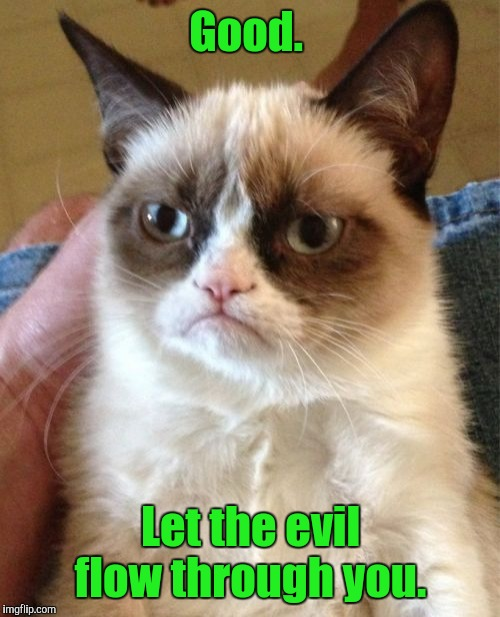 Grumpy Cat Meme | Good. Let the evil flow through you. | image tagged in memes,grumpy cat | made w/ Imgflip meme maker