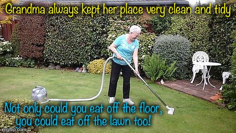 Gotta love Grandma! | Grandma always kept her place very clean and tidy Not only could you eat off the floor, you could eat off the lawn too! | image tagged in grandma vacuuming yard,memes,evilmandoevil,funny | made w/ Imgflip meme maker