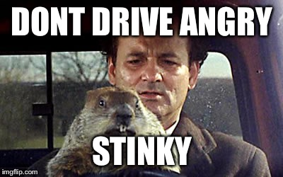 Too early for flapjacks? | DONT DRIVE ANGRY STINKY | image tagged in bill murray day groundhogies,groundhog day,funny movie lines,vines,trees,dirt | made w/ Imgflip meme maker