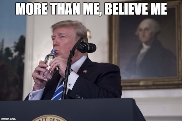 Tiny Donald | MORE THAN ME, BELIEVE ME | image tagged in tiny donald | made w/ Imgflip meme maker
