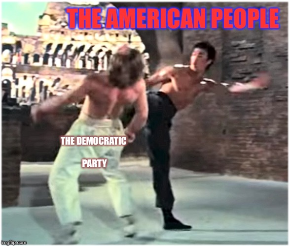 Wataaaa | THE AMERICAN PEOPLE THE DEMOCRATIC PARTY | image tagged in bruce leeith kicks chucks face | made w/ Imgflip meme maker