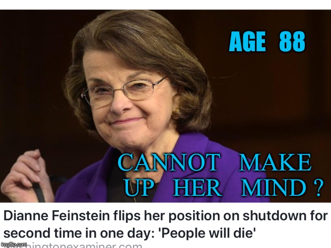 Go figure | AGE   88 CANNOT   MAKE   UP   HER   MIND ? | image tagged in congress | made w/ Imgflip meme maker
