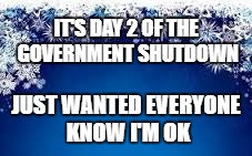 In case anyone was worried about me . . .  | IT'S DAY 2 OF THE GOVERNMENT SHUTDOWN JUST WANTED EVERYONE KNOW I'M OK | image tagged in snow flake christmas service announcement,libtard,panic,help,we're all doomed | made w/ Imgflip meme maker