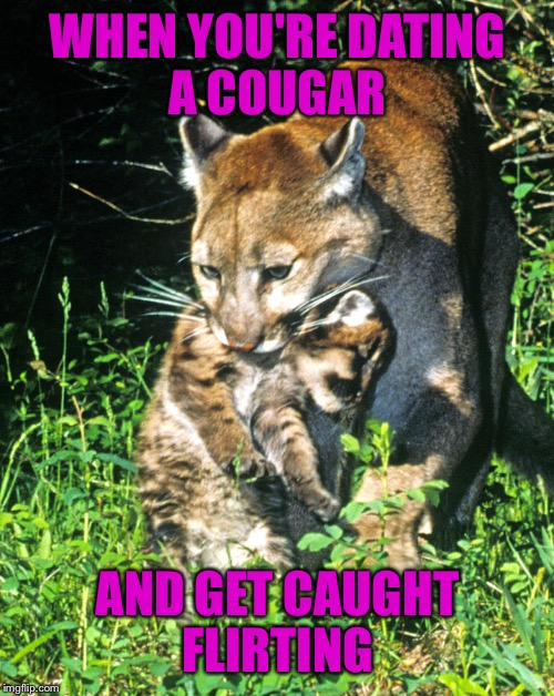WHEN YOU'RE DATING A COUGAR AND GET CAUGHT FLIRTING | made w/ Imgflip meme maker