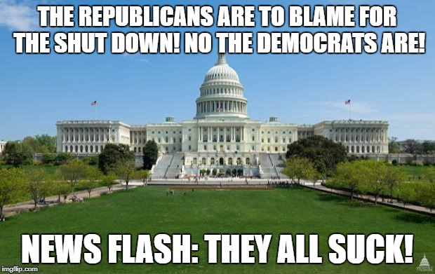 dbag government | THE REPUBLICANS ARE TO BLAME FOR THE SHUT DOWN! NO THE DEMOCRATS ARE! NEWS FLASH: THEY ALL SUCK! | image tagged in dbag government | made w/ Imgflip meme maker