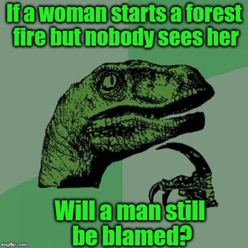 Philosoraptor Meme | If a woman starts a forest fire but nobody sees her Will a man still be blamed? | image tagged in memes,philosoraptor | made w/ Imgflip meme maker