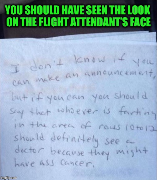 Now THAT is bad! | YOU SHOULD HAVE SEEN THE LOOK ON THE FLIGHT ATTENDANT'S FACE | image tagged in fart jokes,flight attendant,funny | made w/ Imgflip meme maker