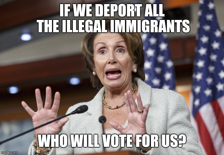 IF WE DEPORT ALL THE ILLEGAL IMMIGRANTS WHO WILL VOTE FOR US? | image tagged in nancy pelosi wtf | made w/ Imgflip meme maker