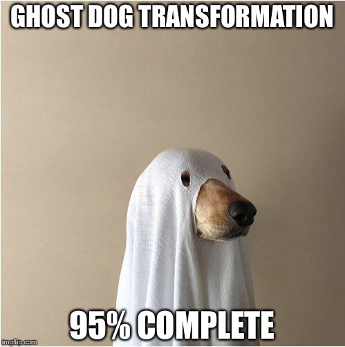 Ghost Doge | GHOST DOG TRANSFORMATION 95% COMPLETE | image tagged in ghost doge,theme week | made w/ Imgflip meme maker