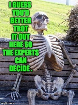 Waiting Skeleton Meme | I GUESS YOU'D BETTER TROT IT OUT HERE SO THE EXPERTS CAN DECIDE . | image tagged in memes,waiting skeleton | made w/ Imgflip meme maker