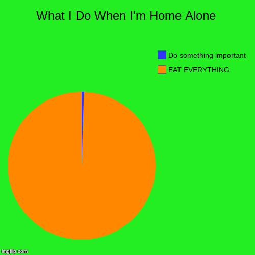 What I Do When I'm Home Alone | EAT EVERYTHING, Do something important | image tagged in funny,pie charts | made w/ Imgflip pie chart maker