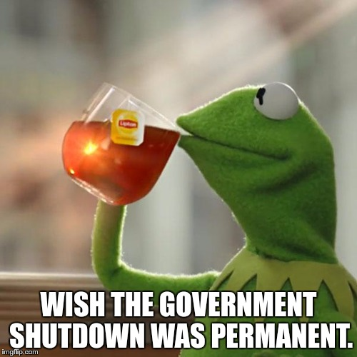 But Thats None Of My Business Meme | WISH THE GOVERNMENT SHUTDOWN WAS PERMANENT. | image tagged in memes,but thats none of my business,kermit the frog | made w/ Imgflip meme maker