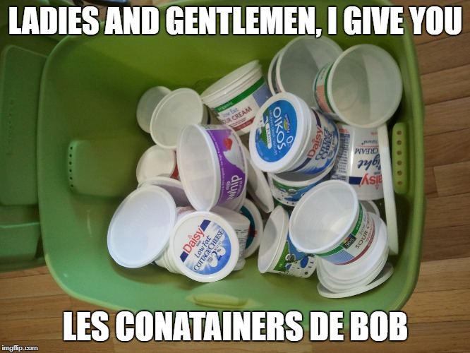 bob's containers | LADIES AND GENTLEMEN,I GIVE YOU LES CONATAINERS DE BOB | image tagged in plastic | made w/ Imgflip meme maker