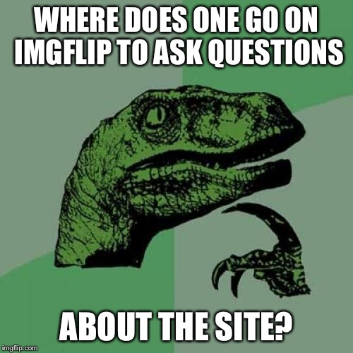 Where's the help setting? | WHERE DOES ONE GO ON IMGFLIP TO ASK QUESTIONS ABOUT THE SITE? | image tagged in memes,philosoraptor | made w/ Imgflip meme maker