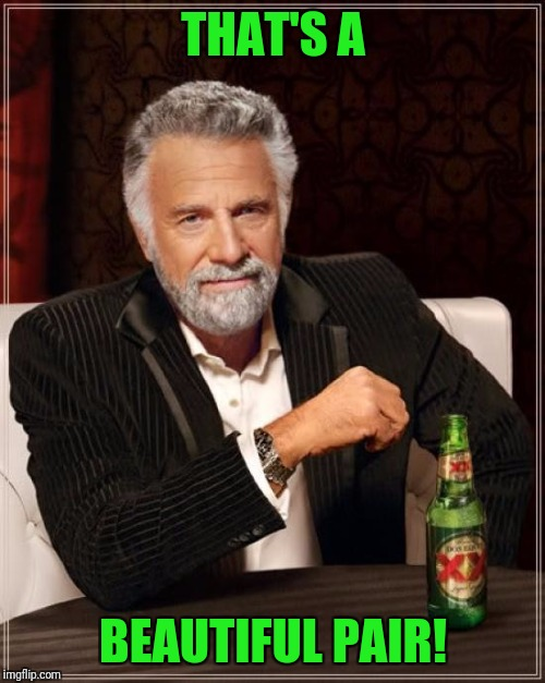 The Most Interesting Man In The World Meme | THAT'S A BEAUTIFUL PAIR! | image tagged in memes,the most interesting man in the world | made w/ Imgflip meme maker