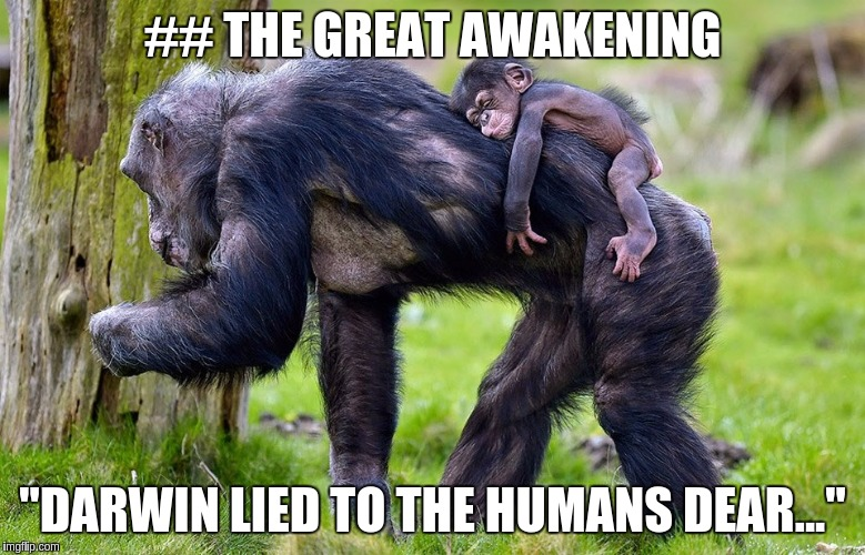 "## THE GREAT AWAKENING ""DARWIN LIED TO THE HUMANS DEAR..."" 