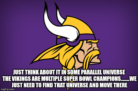 JUST THINK ABOUT IT IN SOME PARALLEL UNIVERSE THE VIKINGS ARE MULTIPLE SUPER BOWL CHAMPIONS........WE JUST NEED TO FIND THAT UNIVERSE AND MO | image tagged in minnesota vikings | made w/ Imgflip meme maker