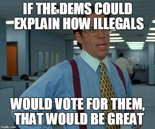That Would Be Great Meme | IF THE DEMS COULD EXPLAIN HOW ILLEGALS WOULD VOTE FOR THEM, THAT WOULD BE GREAT | image tagged in memes,that would be great | made w/ Imgflip meme maker