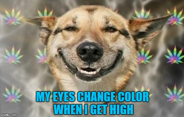 MY EYES CHANGE COLOR WHEN I GET HIGH | made w/ Imgflip meme maker