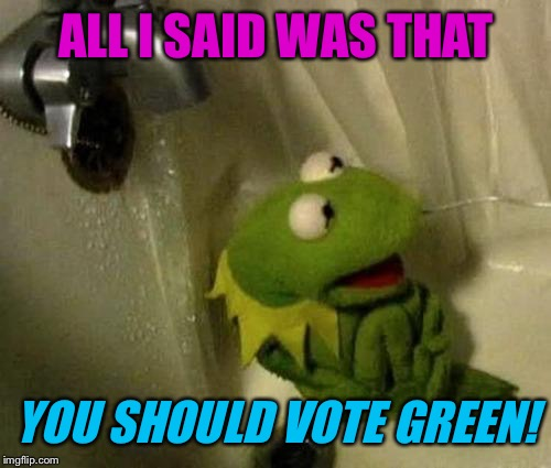 ALL I SAID WAS THAT YOU SHOULD VOTE GREEN! | made w/ Imgflip meme maker