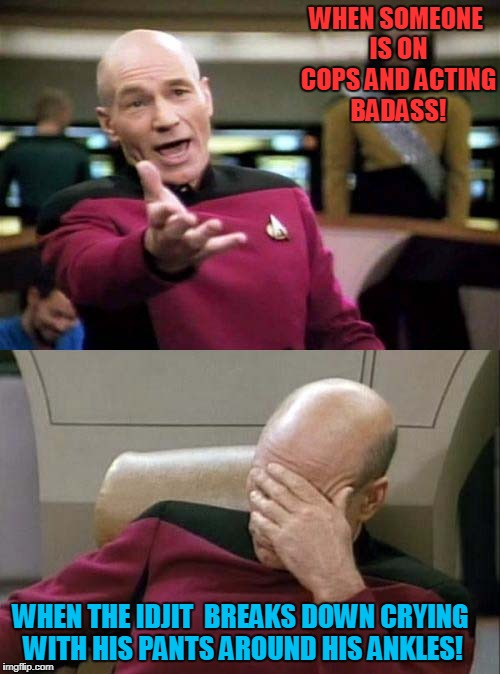 No Pants No Glory! | WHEN SOMEONE IS ON COPS AND ACTING BADASS! WHEN THE IDJIT  BREAKS DOWN CRYING WITH HIS PANTS AROUND HIS ANKLES! | image tagged in picard wtf and facepalm combined,cops,criminal | made w/ Imgflip meme maker