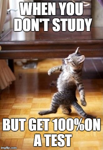 Cool Cat Stroll Meme | WHEN YOU DON'T STUDY BUT GET 100%ON A TEST | image tagged in memes,cool cat stroll | made w/ Imgflip meme maker