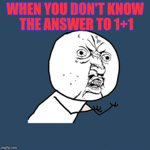 Y U No Meme | WHEN YOU DON'T KNOW THE ANSWER TO 1+1 | image tagged in memes,y u no | made w/ Imgflip meme maker