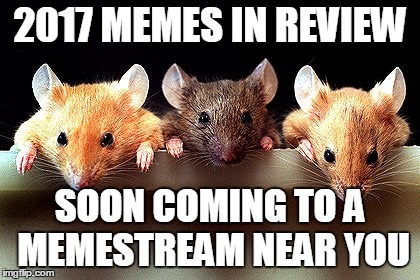 That way I can still do them even when I don't have enough submissions. | 2017 MEMES IN REVIEW SOON COMING TO A MEMESTREAM NEAR YOU | image tagged in 3 mice,memes,top users,favorites,halfway,2017 memes in review | made w/ Imgflip meme maker