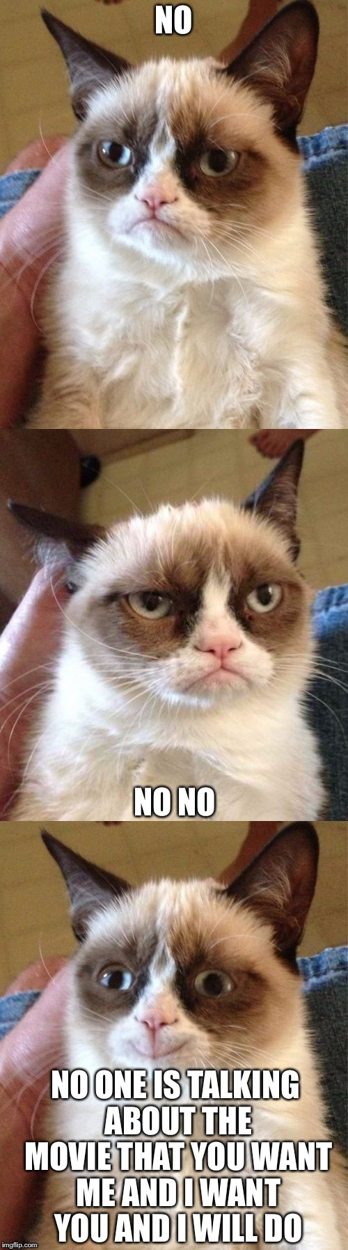 Grumpy cat's level | NO NO NO NO ONE IS TALKING ABOUT THE MOVIE THAT YOU WANT ME AND I WANT YOU AND I WILL DO | image tagged in bad pun grumpy cat,level,memes,happy cat | made w/ Imgflip meme maker