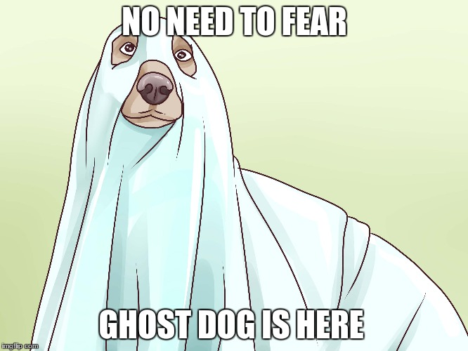 ghost week  | NO NEED TO FEAR GHOST DOG IS HERE | image tagged in memes,ghost week | made w/ Imgflip meme maker