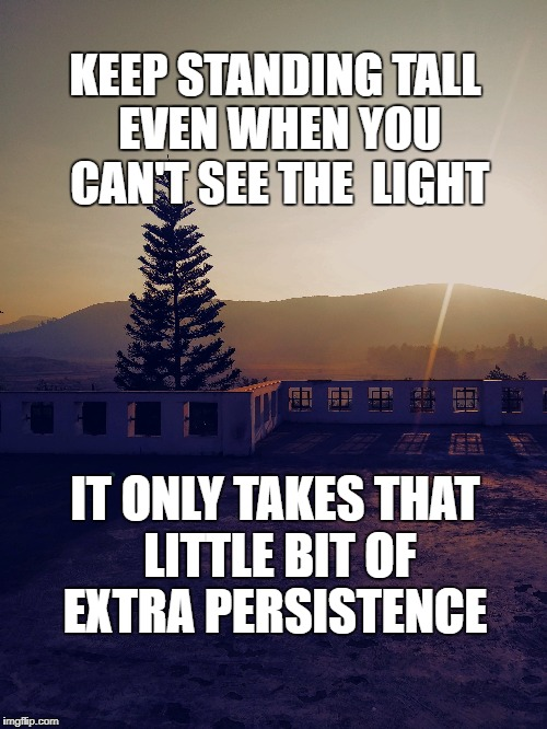 Persistence | KEEP STANDING TALL EVEN WHEN YOU CAN'T SEE THE  LIGHT IT ONLY TAKES THAT LITTLE BIT OF EXTRA PERSISTENCE | image tagged in effort,goals,persistence,focus,life,motivation | made w/ Imgflip meme maker