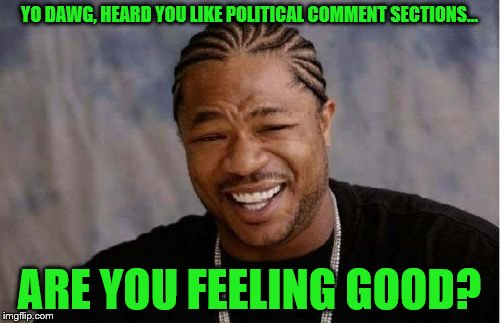 Yo Dawg Heard You Meme | YO DAWG, HEARD YOU LIKE POLITICAL COMMENT SECTIONS... ARE YOU FEELING GOOD? | image tagged in memes,yo dawg heard you | made w/ Imgflip meme maker