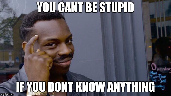 Roll Safe Think About It Meme | YOU CANT BE STUPID IF YOU DONT KNOW ANYTHING | image tagged in memes,roll safe think about it | made w/ Imgflip meme maker
