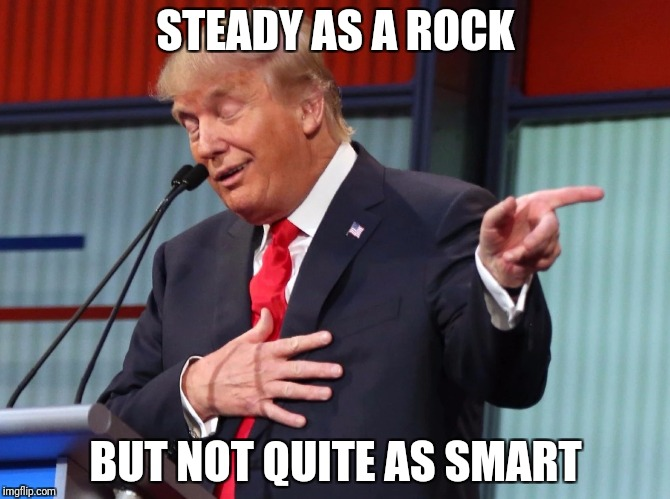 Trump Pointing Away |  STEADY AS A ROCK; BUT NOT QUITE AS SMART | image tagged in trump pointing away | made w/ Imgflip meme maker