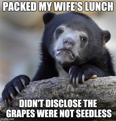 Confession Bear Meme | PACKED MY WIFE'S LUNCH DIDN'T DISCLOSE THE GRAPES WERE NOT SEEDLESS | image tagged in memes,confession bear | made w/ Imgflip meme maker