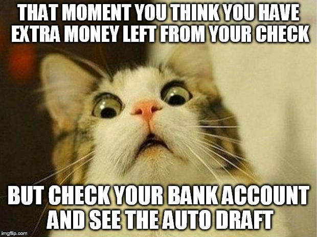 Scared Cat Meme | THAT MOMENT YOU THINK YOU HAVE EXTRA MONEY LEFT FROM YOUR CHECK BUT CHECK YOUR BANK ACCOUNT AND SEE THE AUTO DRAFT | image tagged in memes,scared cat | made w/ Imgflip meme maker