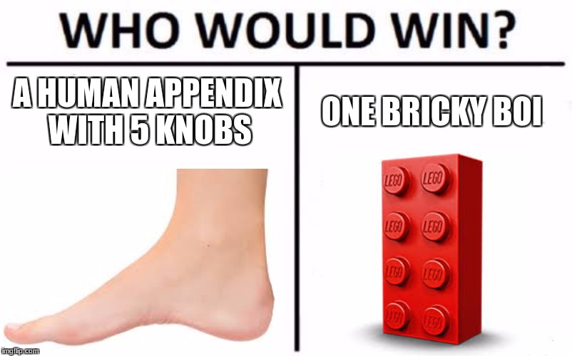 Who Would Win? Meme | A HUMAN APPENDIX WITH 5 KNOBS ONE BRICKY BOI | image tagged in memes,who would win | made w/ Imgflip meme maker