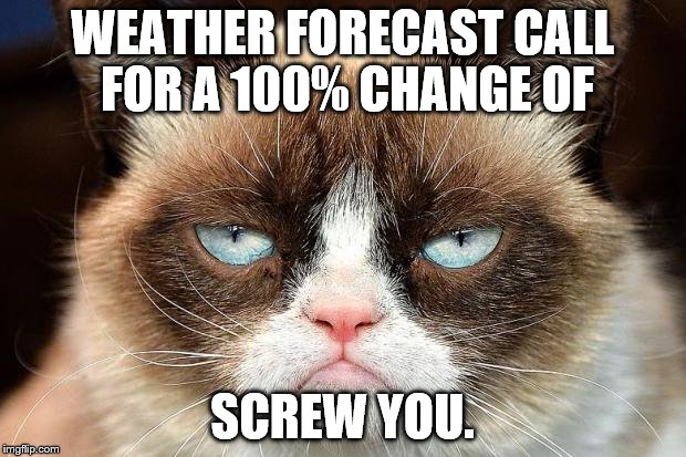 Grumpy Cat Not Amused | WEATHER FORECAST CALL FOR A 100% CHANGE OF SCREW YOU. | image tagged in memes,grumpy cat not amused,grumpy cat | made w/ Imgflip meme maker