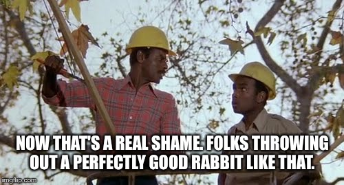 NOW THAT'S A REAL SHAME. FOLKS THROWING OUT A PERFECTLY GOOD RABBIT LIKE THAT. | made w/ Imgflip meme maker