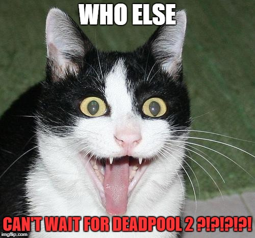 sometime in May! | WHO ELSE CAN'T WAIT FOR DEADPOOL 2 ?!?!?!?! | image tagged in excited cat,deadpool,deadpool 2 | made w/ Imgflip meme maker