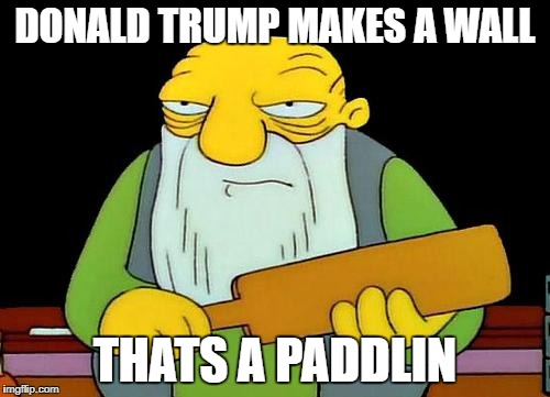 That's a paddlin' Meme | DONALD TRUMP MAKES A WALL THATS A PADDLIN | image tagged in memes,that's a paddlin' | made w/ Imgflip meme maker